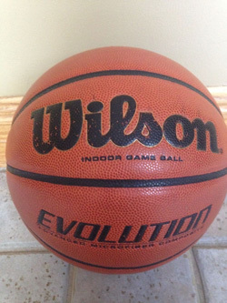 things that sell best on ebay - wilson evolution basketball